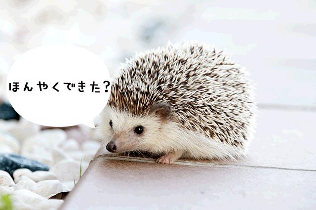 翻訳できた?